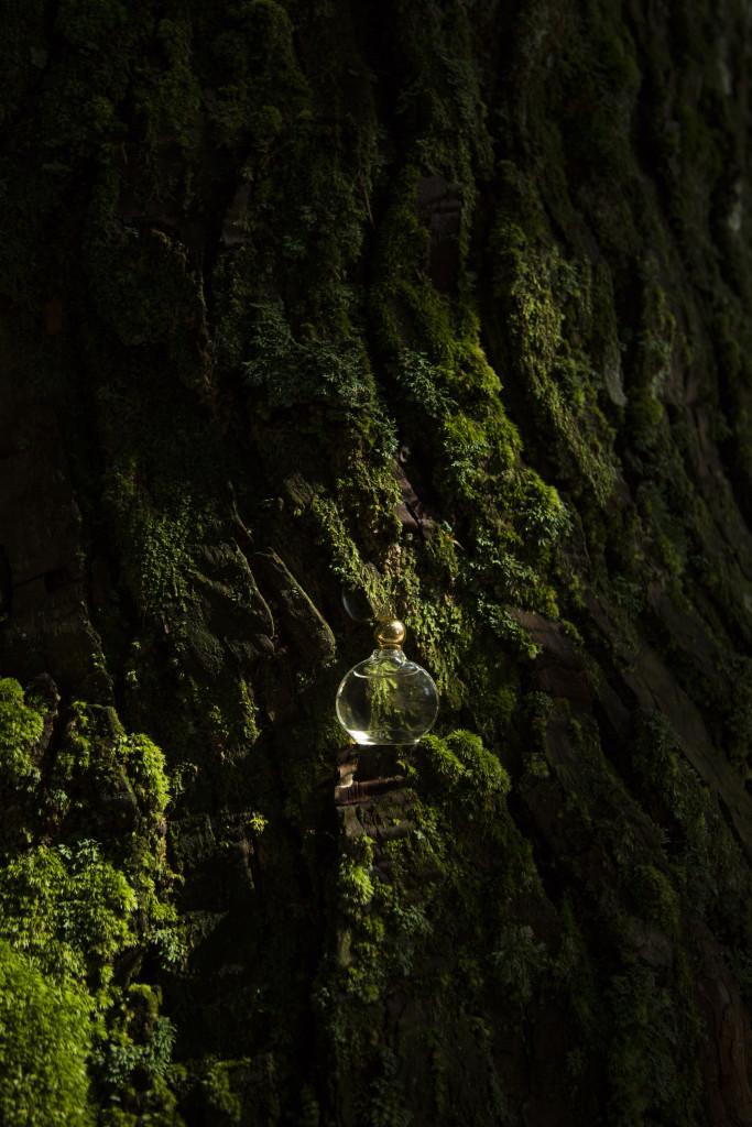 杜の響×森武史
